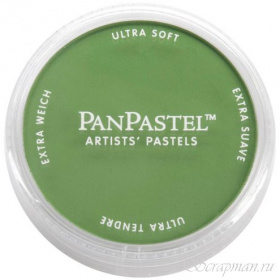 "Ультрамягкая пастель ""Chromium Oxide Green Shade"" от Pan Pastel"